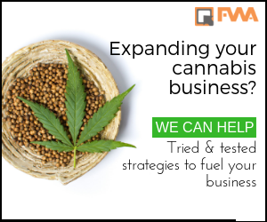 Digital Marketing Solutions for the Cannabis Industry
